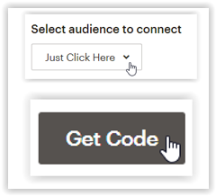 Just Click Here screenshot audience get code