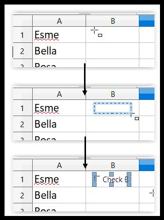JCH add a checkbox in Calv