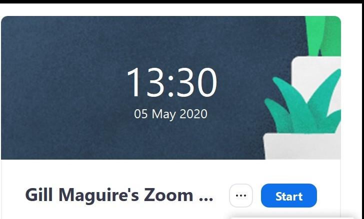 Zoom Start button