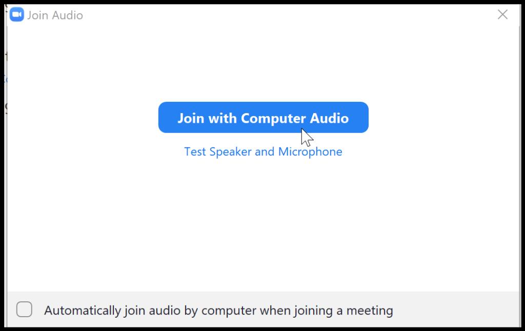 Zoom Computer audio