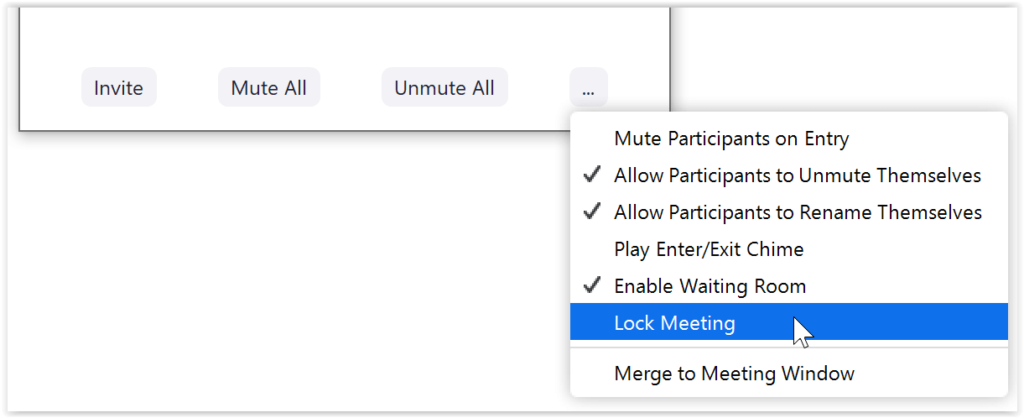 Zoom lock meeting (safe and secure)