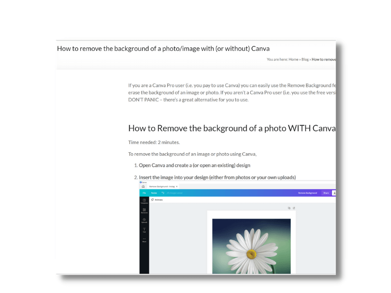 Background Remover in Canva