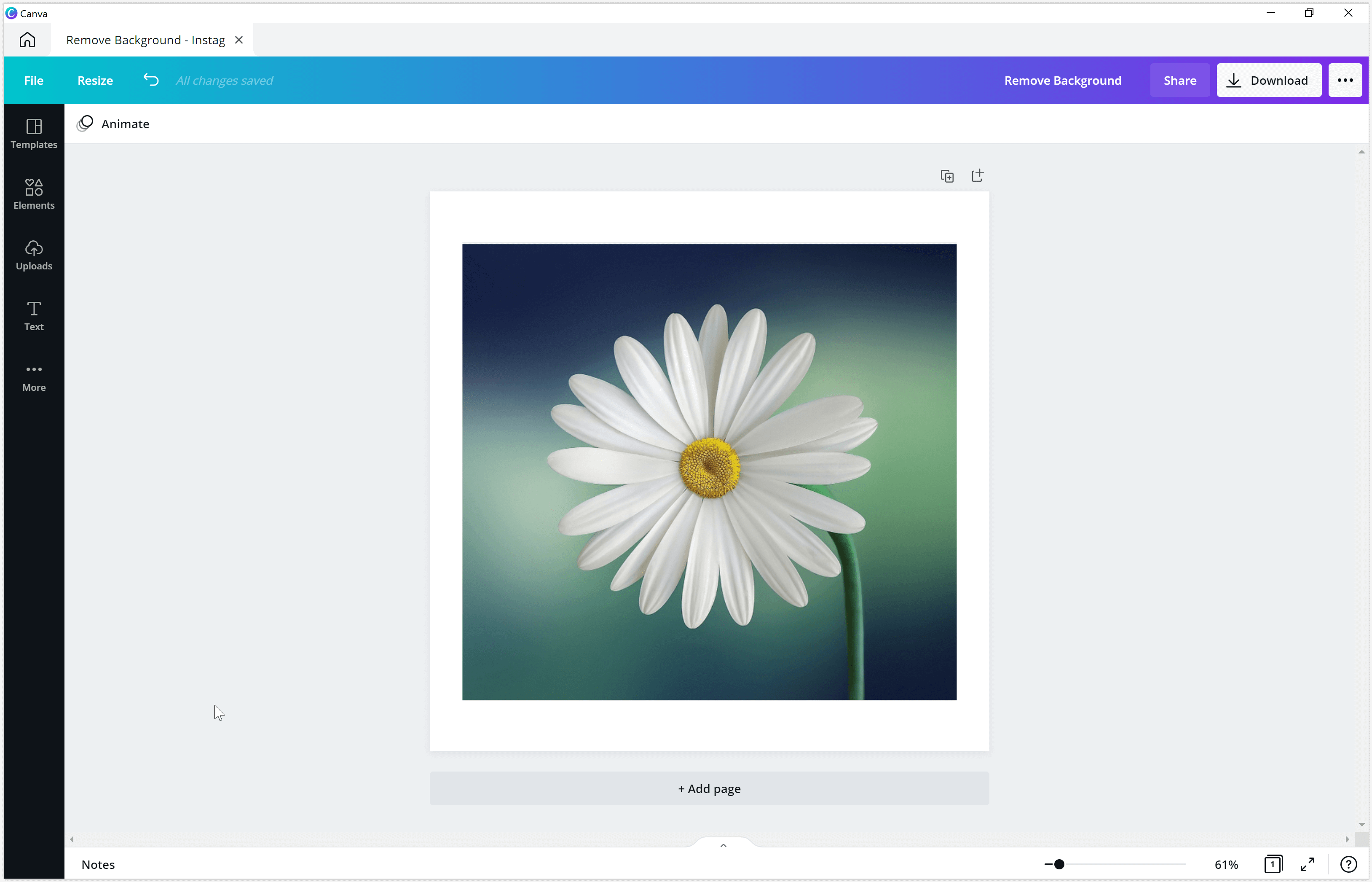 Canva remove background from image/photo