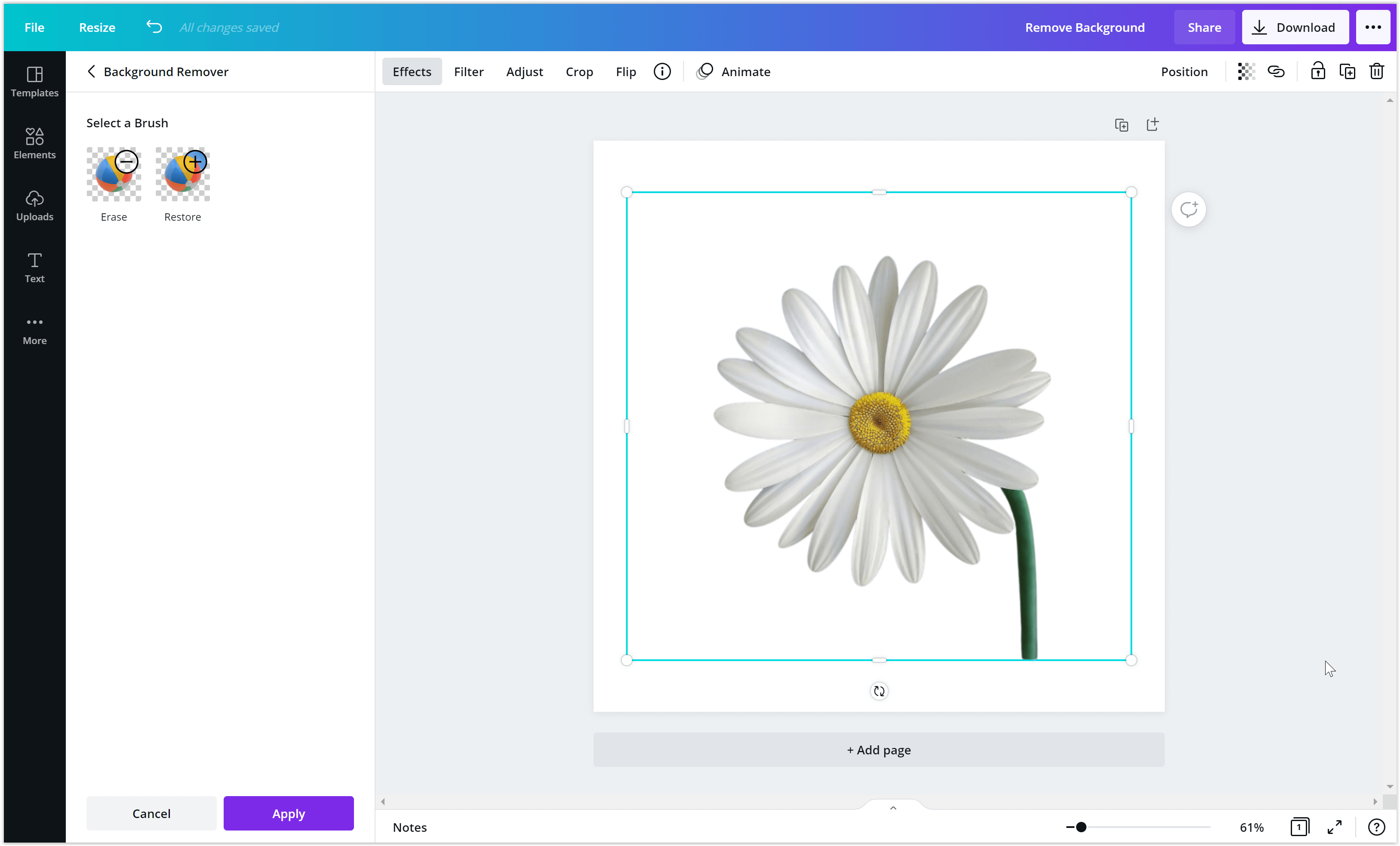 Background is removed in Canva